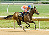Merryland Moon winning at Delaware Park on 5/26/12