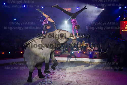 Merrylu Casselly and Rene Casselly Jr. from Germany perform a Golden Pierrot Award winning acrobatic elephant act during the 10th International Circus Festival in Budapest, Hungary on January 13, 2014. ATTILA VOLGYI