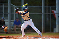 Mount St. Mary's Mountaineers left fielder Myles Nicholson (9) bats during a game against the Ball State Cardinals on March 9, 2019 at North Charlotte Regional Park in Port Charlotte, Florida.  Ball State defeated Mount St. Mary's 12-9.  (Mike Janes/Four Seam Images)