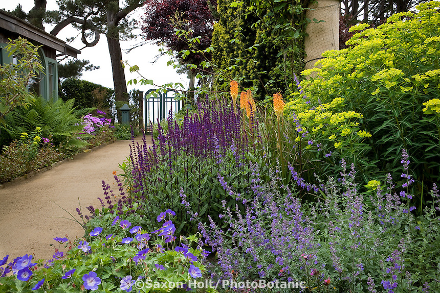 Flowering perennial garden by earthen path leading to gate and ocean view in California coastal garden; design by Gary Ratway
