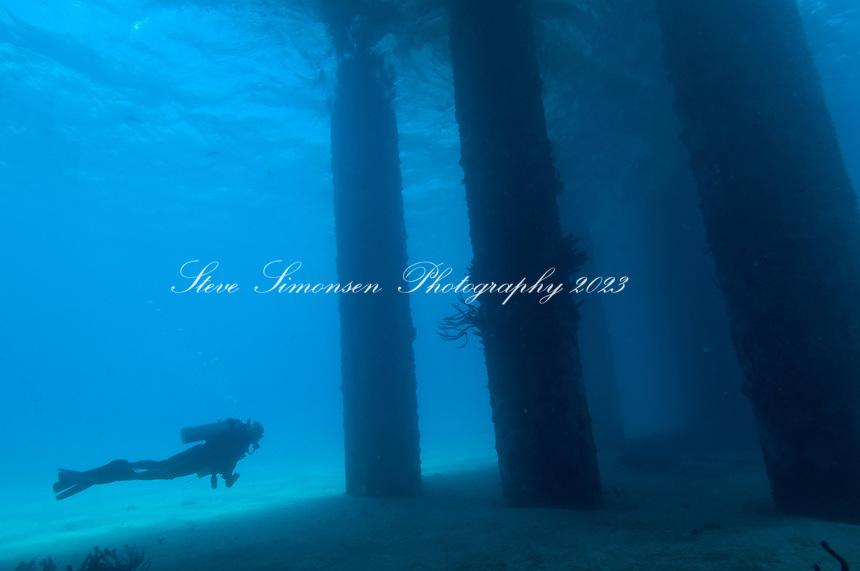 Scuba diving the Fredericksted Pier, St Croix<br /> U.S. Virgin Islands