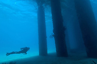 Scuba diving the Fredericksted Pier, St Croix<br />