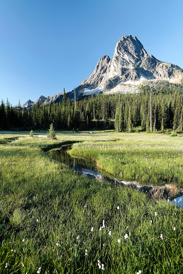 Pond below Liberty Bell Mountain, Washington Pass, Hwy 20, Wenatchee National Forest, North Cascades, Washington