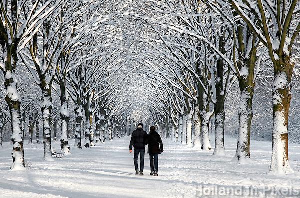 Wandelen in het Amsterdamse Bos in de sneeuw
