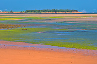 Sandy shoreline along the Northumberland Strait<br />