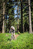 Deutschland, Thueringen, bei Schmiedefeld am Rennsteig: Mountainbiking auf dem Rennsteig, dem aeltesten und meistbegangenen Weitwanderweg Deutschlands | Germany, Thuringia, near Schmiedefeld am Rennsteig: mountainbiking at Rennsteig hiking trail, Germany's oldest and most frequented long distance hiking trail