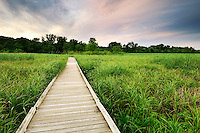 A boardwalk leads into a low area of the Minnesota River Valley in the Minnesota Valley National Wildlife Refuge.