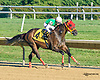 Star Blessing winning at Delaware Park on 9/14/15