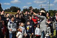 """MAR 2013 - Puglia, Salento, Melendugno, 'Liberiamoci in volo' iniziativa dell'Osservatorio faunistico Provincia di Lecce ?Museo di Calimera? per la liberazione di rapaci, gheppi, poiane e sparvieri curati in seguito a ferite da arma da fuoco nel Centro di recupero fauna selvatica..MAR 2013 - Apulia, Salento, Melendugno, 'Back to fly free' initiative of the Osservatorio faunistico Province of Lecce """"Museum of Calimera"""" for the release of birds of prey, kestrels, buzzards and sparrow hawks treated for gunshot wounds in the center of wildlife recovery."""