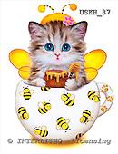 Kayomi, CUTE ANIMALS, paintings, CupKittyBee_M, USKH37,#AC# stickers illustrations, pinturas ,everyday