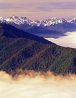 Mountains and fog in Olympic National Park, WA