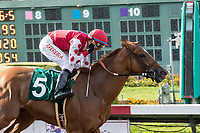 CYPRESS, CA. JULY 8: #5 Skye Diamonds ridden by Tiago Pereira wins the Great Lady M Stakes (Grade ll) on July 8, 2017 at Los Alamitos Race Course in Cypress, CA (Photo by Casey Phillips/Eclipse Sportswire/Getty Images)