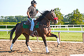 I'll Have Another's contstant companion, the wonderful Lava Man.