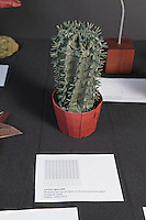 OrigamiUSA Convention 2015 Exhibition. Cactus, Opus 680 designed and folded (2008 - 2015) by Robert Lang, CA.