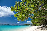 Honeymoon Beach.Virgin Islands National Park.St. John.U.S. Virgin Islands