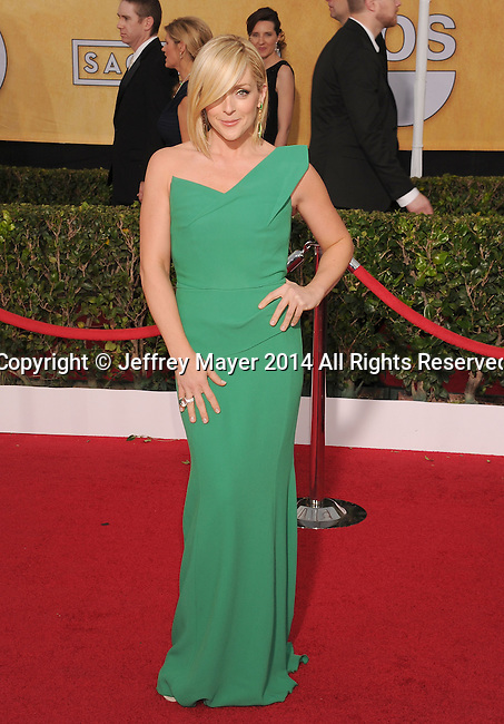 LOS ANGELES, CA- JANUARY 18: Actress Jane Krakowski arrives at the 20th Annual Screen Actors Guild Awards at The Shrine Auditorium on January 18, 2014 in Los Angeles, California.