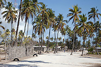 Jambiani, Zanzibar, Tanzania.  Village Street Scene.