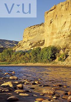 Sandstone cliffs and riparian growth along the Green River, Dinosaur National Monument, Utah, USA.