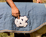 July 31, 2017. Chapel Hill, North Carolina.<br /> <br /> Don Basnight points to the UNC logo on Rameses the Ram's blanket. <br /> <br /> The ram blankets for Rameses are handmade by Carolyn Hogan, a member of the Hogan family who have long been the caretakers of Rameses the Ram. The current Rameses is the 21st in the line of the University of North Carolina's live mascot.