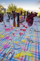 Set table with rose petals. Summer Lake Inn. Oregon