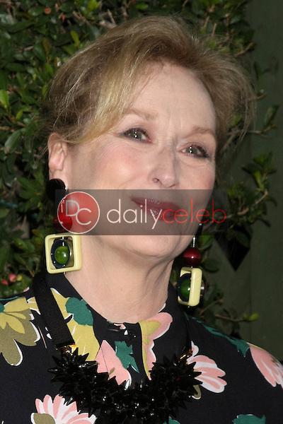 "Meryl Streep<br /> at the ""Suffragette"" Premiere, Samuel Goldwyn Theater, Beverly Hills, CA 10-20-15<br /> David Edwards/DailyCeleb.Com 818-249-4998"