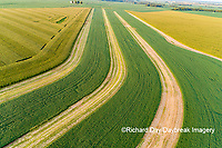 63801-09809 Terraced soybean field-aerial Marion Co. IL