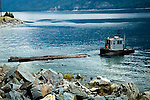 Tugboat moving pulp logs on Columbia River, British Columbia
