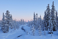 Mid winter colours in -39 degrees C, near the Icehotel, in Jukkasjärvi, Lapland, Laponia, Norrbotten county, Sweden