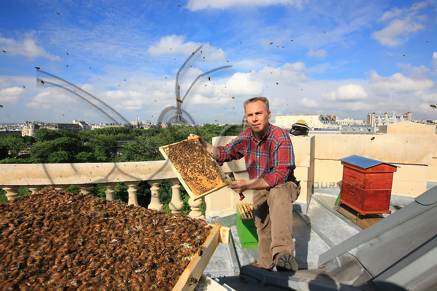 """On June 4, 2009, Nicolas Géant set up a hive on the roof of the Grand Palais in Paris. """"I have about 150 hives to the west of Paris, one at Vuitton's at the Pont Neuf bridge and today two on the roof of the Grand Palais. My objective in setting up these hives right in the heart of Paris is to point my finger at this paradox: the bee in the city does very well while those of the fields - not the county - do very badly. That shows that there are presently problems. So I looked for a mythical spot in Paris, I wanted it to be near the Champs-Elysées, which everyone knows, from New York to Tokyo."""""""