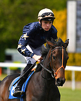 Aroha ridden byCallum Shepherd goes down to the start  of The Simon & Nerys Dutfield Memorial Novice Stakes   during Afternoon Racing at Salisbury Racecourse on 16th May 2019
