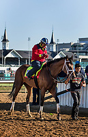 LOUISVILLE, KY - MAY 02: State of Honor walks off the track at Churchill Downs on May 02, 2017 in Louisville, Kentucky. (Photo by Alex Evers/Eclipse Sportswire/Getty Images)