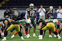 Kyle Callahan (Kiel Quarterback)<br /> German Bowl XXXI Berlin Adler vs. Kiel Baltic Hurricanes, Commerzbank Arena *** Local Caption *** Foto ist honorarpflichtig! zzgl. gesetzl. MwSt. Auf Anfrage in hoeherer Qualitaet/Aufloesung. Belegexemplar an: Marc Schueler, Alte Weinstrasse 1, 61352 Bad Homburg, Tel. +49 (0) 151 11 65 49 88, www.gameday-mediaservices.de. Email: marc.schueler@gameday-mediaservices.de, Bankverbindung: Volksbank Bergstrasse, Kto.: 151297, BLZ: 50960101