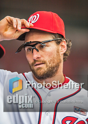 14 May 2016: Washington Nationals second baseman Daniel Murphy dons his cap in the dugout during the first game of a double-header against the Miami Marlins at Nationals Park in Washington, DC. The Nationals defeated the Marlins 6-4 in the afternoon matchup.  Mandatory Credit: Ed Wolfstein Photo *** RAW (NEF) Image File Available ***