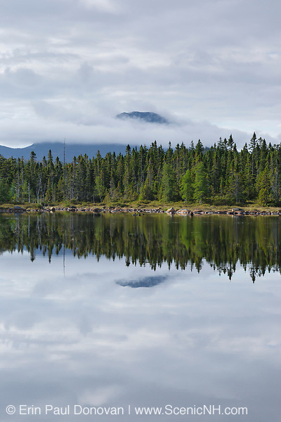 Pemigewasset Wilderness - Mount Carrigain from Shoal Pond during the summer months. Located in Lincoln, New Hampshire USA.