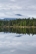 Mount Carrigain from Shoal Pond in the Pemigewasset Wilderness in Lincoln, New Hampshire on a cloudy summer day. This remote pond is located along the Shoal Pond Trail in the 45,000-acre Pemigewasset Wilderness in the White Mountain National Forest.