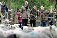 Prince William Duke of Cambridge and Kate Duchess of Cambridge Katherine Catherine Middleton with Chris Brown and Jimmy Brown during a visit to Deepdale Hall Farm, a traditional fell sheep farm, in Patterdale, Cumbria. Photo Credit: ALPR/AdMedia