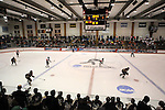 2012 W DIII Ice Hockey