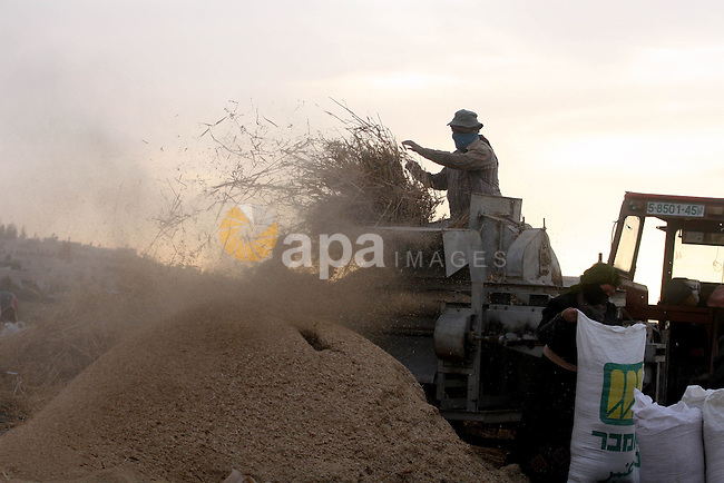 Palestinian farmers load a combine harvester with wheat during the annual harvest season in the village  of Deir Ballout, west of the city of Ramallah, in the Israeli occupied Palestinian West Bank on May 27, 2012.The Palestinian economy is experiencing a serious drop in liquid assets that has worsened since last year due to a reduction in aid from Western and Gulf countries, as well as trade and movement restrictions imposed by Israel, an IMF report said earlier in the year. Photo by Issam Rimawi