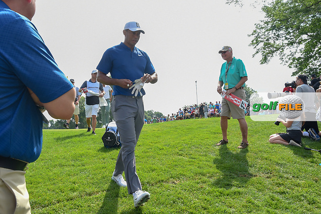 Tiger Woods (USA) heads to 13 during 1st round of the World Golf Championships - Bridgestone Invitational, at the Firestone Country Club, Akron, Ohio. 8/2/2018.<br /> Picture: Golffile | Ken Murray<br /> <br /> <br /> All photo usage must carry mandatory copyright credit (© Golffile | Ken Murray)