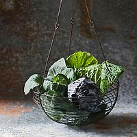 Gastronomie Générale:Chou pointu, Chou rouge et Chou pommé   - Stylisme : Valérie LHOMME