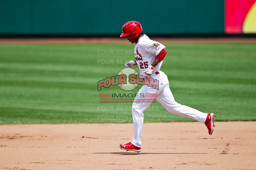 Oscar Taveras (25) of the Springfield Cardinals rounds the bases after hitting a three run home run during a game against the Arkansas Travelers at Hammons Field on May 8, 2012 in Springfield, Missouri. (David Welker/ Four Seam Images)