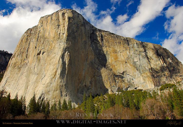 El Capitan near Sunset in March, Yosemite Valley, Yosemite National Park