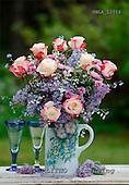 Carl, FLOWERS, photos, SWLA12016,#f# Blumen, Natur, flores, naturaleza