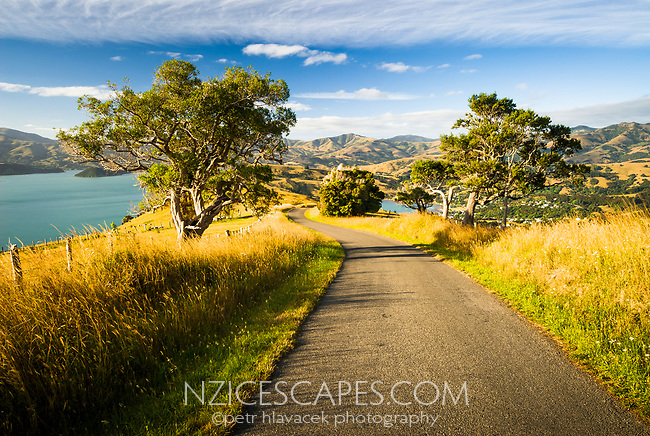Lighthouse Road near Akaroa, Banks Peninsula, Christchurch, New Zealand
