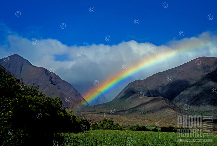 Sugar cane fields and the West Maui Mountains with a rainbow at Ukumehame, Maui.