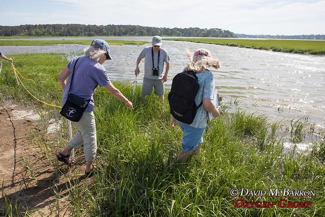 Mary Bob & Diane On Horseshoe Crab Survey