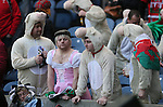Welsh fans dressed as Little Bo Peep and her sheep  - RBS 6Nations 2015 - Scotland  vs Wales - BT Murrayfield Stadium - Edinburgh - Scotland - 15th February 2015 - Picture Simon Bellis/Sportimage