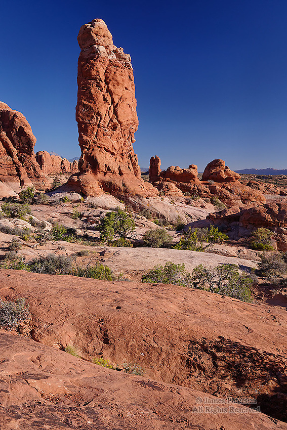 Sandstone Pinnacle, Arches National Park, Utah.  Available in sizes up to 40 x 60 inches.