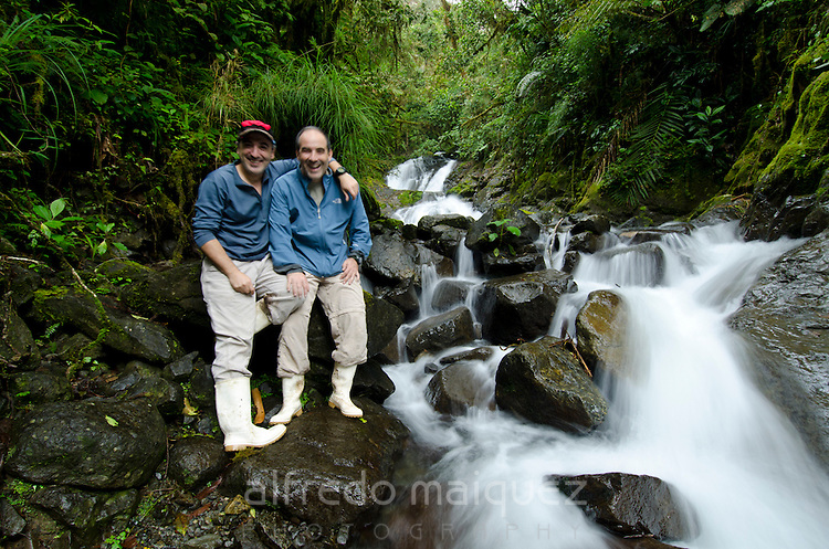 Small waterfall at cloud forest, La Amistad international park, Chiriqui province,Panama,central America