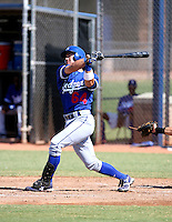 Tony Delmonico / Los Angeles Dodgers 2008 Instructional League..Photo by:  Bill Mitchell/Four Seam Images